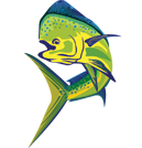Canon Dust Cover DC24-1